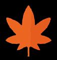 橙色のもみじのイラスト素材透過png